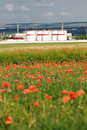 Free Oil Storage At Poppy Field Stock Photos - 10263913