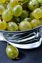 Free Juicy Gooseberry Royalty Free Stock Photography - 1077467