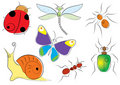 Free Vector Insects Royalty Free Stock Image - 10774106