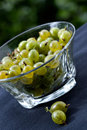 Free Juicy Gooseberry Stock Photography - 1082462