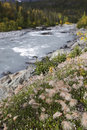 Free Fall River Landscape, Shallow DOF Stock Photos - 1200133
