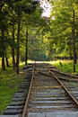 Free Old Time Street Trolley Tracks Royalty Free Stock Photography - 1212667