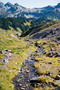 Free Stream Of Glacier Melt Along The Hiking Trail Of Mt. Rainier Stock Photography - 1239542