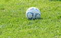 Free Soccer Ball Royalty Free Stock Photo - 1248055