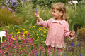 Free Girl Holding In Her Hand Annual Delphinium Stock Photo - 13803590