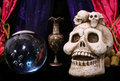 Free Skull And Crystal Ball Royalty Free Stock Image - 1443026