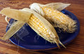 Free Corn In Husks On Yellow Plate Royalty Free Stock Images - 15196339