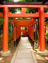 Free Japanese Archways Royalty Free Stock Photos - 15309168