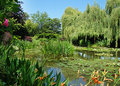 Free Peaceful Garden With Lily Pond Stock Images - 15682494