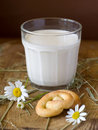 Free Glass Of Milk Stock Photography - 15696132