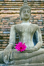 Free Buddha Old Royalty Free Stock Photo - 16205935