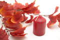 Free Red Leaves And Candle Stock Photos - 16244343