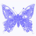 Free Aqua Butterfly Royalty Free Stock Image - 16496926
