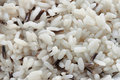Free Wild And Natural Rice Stock Photo - 1683150