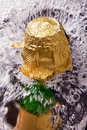 Free Bottle Of Champagne, Cork And Splashing Royalty Free Stock Photography - 16842407