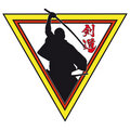Free Martial Art Colored Simbol Icon. Stock Images - 16958484