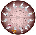 Free Zodiac Sign Rabbit Stock Photo - 18070430