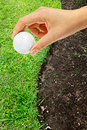 Free Hand Holding Golf Ball Royalty Free Stock Photography - 19839517