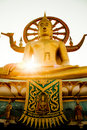 Free The Buddha Royalty Free Stock Image - 20730596