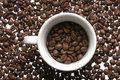 Free Cup Of Coffee Beans Stock Photo - 2111190
