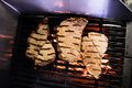 Free Flame Grilled Meat On A Grill Royalty Free Stock Image - 22444196