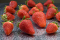 Free Strawberry Stock Photos - 2294243