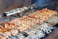 Free Cocked Pork Kabobs Grilled On Skewers Stock Photography - 23569622