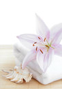 Free Spa Towel With Flower Stock Images - 25682004