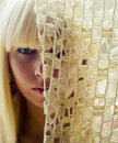 Free Blond Woman S Face Behind Net Royalty Free Stock Photos - 2704678