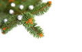Free Isolated Pine In The Corner Of Christmas Frame Royalty Free Stock Image - 27241646