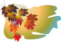 Free Vector Fall Leaves Stock Images - 27410964