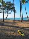Free Wakeboard On The Beach Stock Photos - 28469503