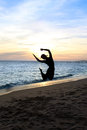 Free Silhouette Jumping Woman Royalty Free Stock Image - 28643926