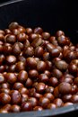 Free Chestnuts Royalty Free Stock Photography - 28728307