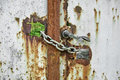 Free Rusty Gate Locked By Chains Royalty Free Stock Images - 30516089