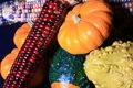 Free Vivid Harvest Colors Stock Image - 3134371