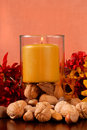 Free Candle With Nuts And Flowers Stock Image - 3144891