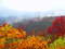 Free Autumn Landscape In The Mountains Royalty Free Stock Photo - 32349075