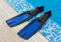 Free Blue Flippers In Swimming Pool Stock Photo - 3282400