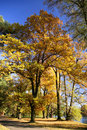 Free Park In Autumn Royalty Free Stock Images - 3422969