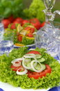 Free Vegetarian Salad Stock Photo - 3426070