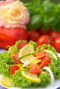 Free Vegetarian Salad Royalty Free Stock Image - 3426086