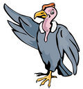 Free Cartoon Styled Vulture Royalty Free Stock Image - 3604066