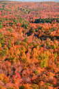Free Autumn Colors Stock Photography - 3724652