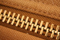 Free Large Gold Zipper Macro Royalty Free Stock Photography - 3972007
