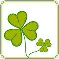 Free St. Patrick S Day Stock Photography - 4383622