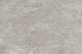 Free Clean Concrete Wall With Mesh Fiberglass Reinforcement Texture B Stock Photography - 45888862