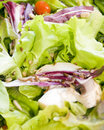 Free Salad Close Up Royalty Free Stock Photos - 4751838