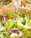 Free Salad Vegetarian Health Royalty Free Stock Image - 4751936