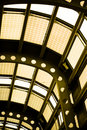 Free Terminal Glass Ceiling Royalty Free Stock Images - 4958619